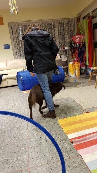 """Anna und Luna machen Handlungsbausteintraining für die Hundeintegrierte Pädagogik. Hier: Trick """"Slalom durch die Beine"""""""