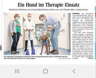 Ausbildung Therapiehund Ludwig